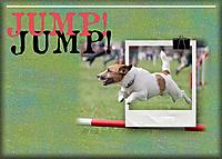 Jump_.jpg