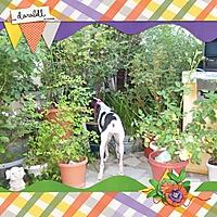 KLDD_GardenDelights_600.jpg