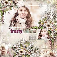 KS-HSA-frosty-winter.jpg
