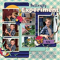 Kyle-Butterfly-experiment-m.jpg