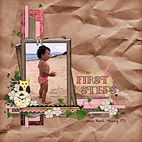 LM_First_steps.jpg