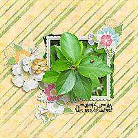 Ladybird-PaperGardenProjectmemyselfandI.jpg
