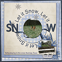 Let_it_Snow_Bastrop_Texas_2-23-2010_-_WD_RTL3_template3.jpg