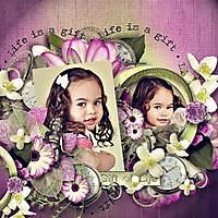 Life_is_a_gift_cs2.jpg