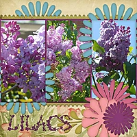 Lilacs_small_edited-2.jpg