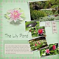 Lily_Pond_web.jpg