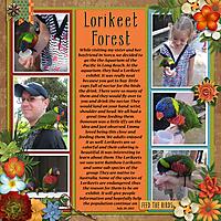 Lorikeet-1.jpg