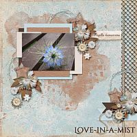 Love_in_a_Mist_PBP.jpg