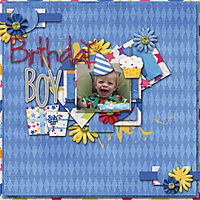 MMDesigns_BDAY_Template1_dp_wishes_robin_web.jpg