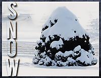 MOC6-Day-_19-SNOW.jpg