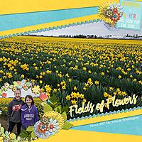 March-DaffodilsWEB.jpg