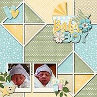 Mason-birth-2015-med.jpg