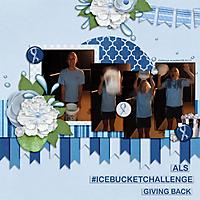 Megan-ALS-challenge-craft-LRT_alongtheborder_template3-copy.jpg
