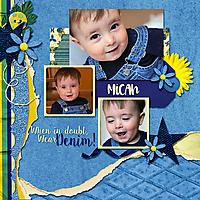Micah_SwL_SummerGroupTemplate17_rfw.jpg