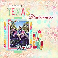 MomentsLikeThese-Bluebonnets-web.jpg