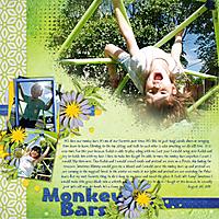 Monkey-Bars-20aug11.jpg