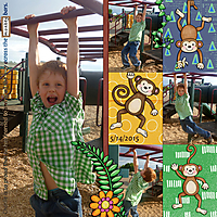 Monkey-Bars-small.jpg