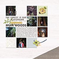 MuirWoods_Sept2014_600.jpg