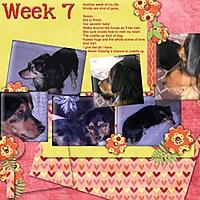 My_Page122.jpg