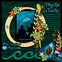 Myrtle_The_Turtle_Web.jpg