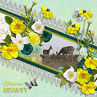Natural-Beauty7.jpg