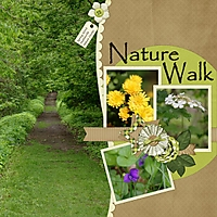 Nature_Walk_Copy_.jpg