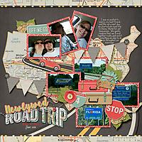 Newlywed_Road_Trip.jpg