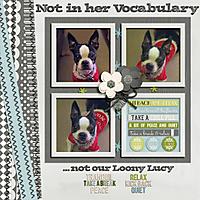 Not_in_her_Vocabulary_copy.jpg