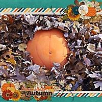 Our_Little_Pumpkin_copy.jpg