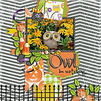 Owl-be-watching.jpg