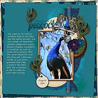 Peacock-memories.jpg