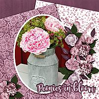 Peonies-in-bloom.jpg