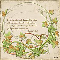 Psalm_23:4.jpg