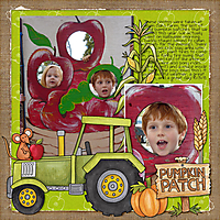 Pumpkin-Patch-small.jpg