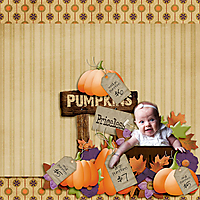 Pumpkins-for-Sale.jpg