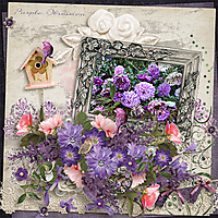 Purple-Obsession-ADSPurpleObsession.jpg
