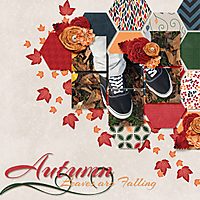 QWS_SS4_temp2autumn_leaves-72.jpg