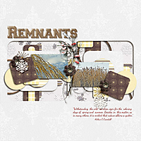 Remnants_copy.jpg