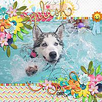 SB-splash-21July.jpg