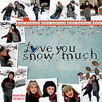 SNOW-DAY-WEB2.jpg