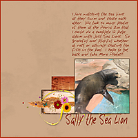 SallySeaLion_templateDD9110.jpg
