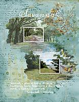 Savannah-est-1733.jpg