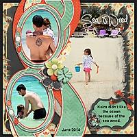 Sea_Weed_June_2014_600x600.jpg