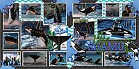 Shamu_2009_OceanWorld_cmg_DFD_MorePicturesToLove2.jpg