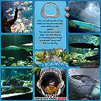 Shark-Encounter-2-DT_DBD2_temp3-copy.jpg