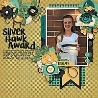 Silver-Hawk.jpg