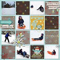 SleddingMaine_December2012.jpg