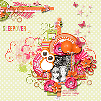 Sleepover-_2.jpg