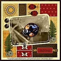 SnS-Ladybird.jpg