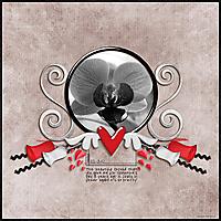 SnS-ValentinesOrchid.jpg